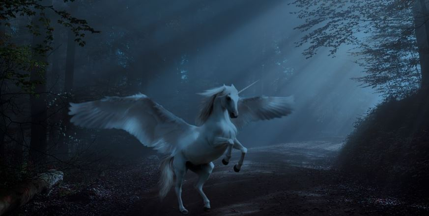 existen los unicornios